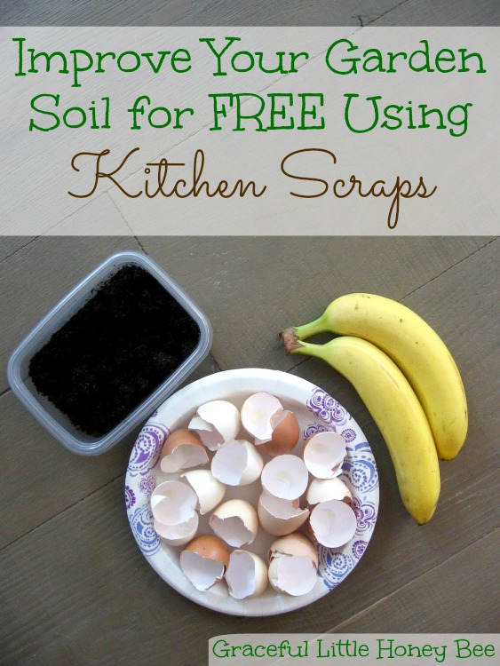 Learn how to turn kitchen scraps into free food for your plants!