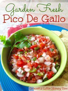 A delicious garden fresh pico de gallo recipe on gracefullittlehoneybee.com
