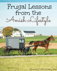 See this list of Frugal Lessons that we can learn from the Amish Lifestyle on gracefullittlehoneybee.com