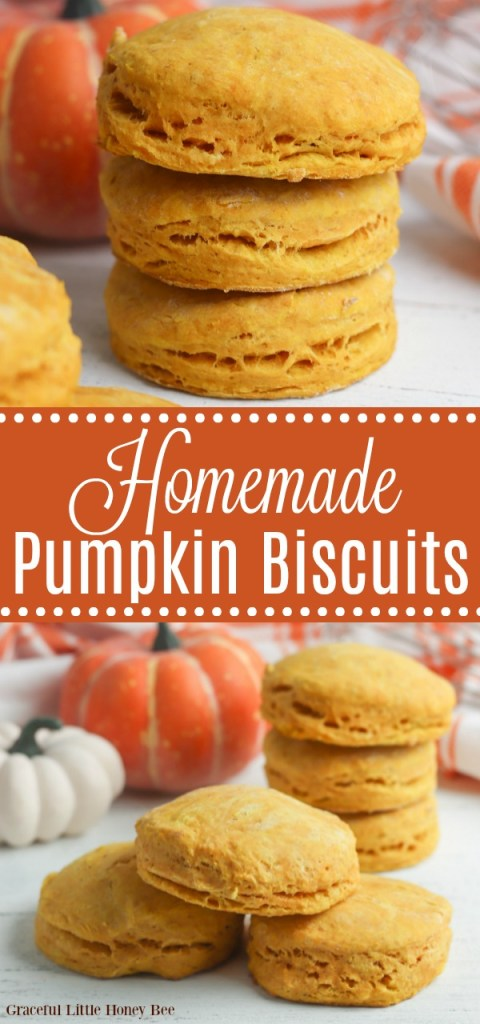 Pumpkin biscuits stacked on top of one another on a white surface with a pumpkin in the background.