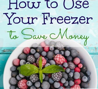 See how to use your freezer to save money on gracefullittlehoneybee.com
