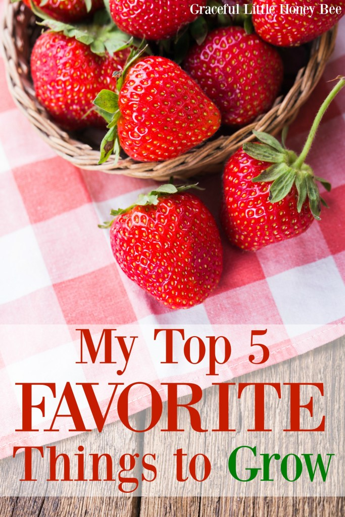 Find out which things I love to grow the most including sweet potatoes and strawberries.
