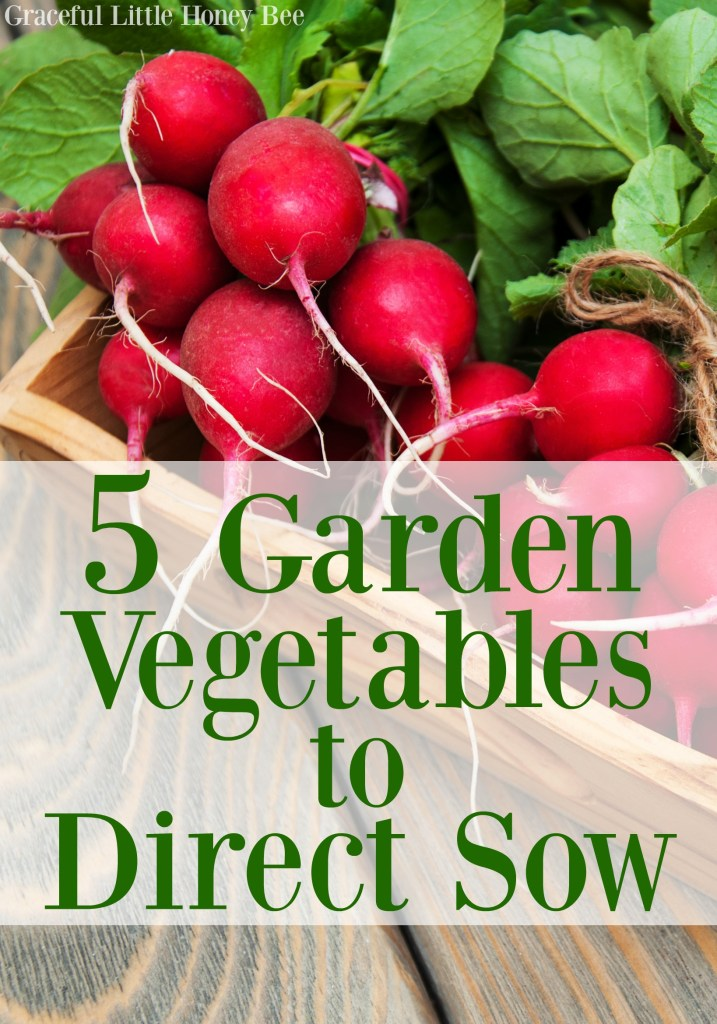 See this list of 5 easy crops that can be directly sown in the garden on gracefullittlehoneybee.com