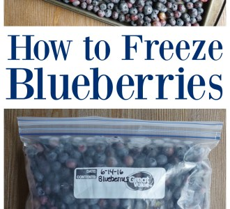 See how quick and easy it is to freeze blueberries for smoothies and muffins all year long on gracefullittlehoneybee.com