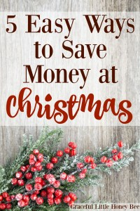 Check out my top 5 tips for saving money at Christmas on gracefullittlehoneybee.com