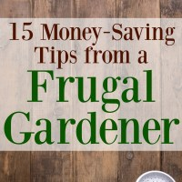 15 Money-Saving Tips from a Frugal Gardener