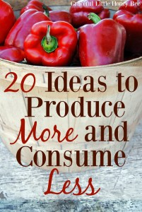 Check out this list of Ideas to Produce More and Consume Less on gracefullittlehoneybee.com