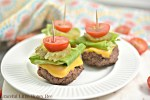 These Low Carb Cheeseburger Bites are a keto friendly recipe for mini bunless burgers that everyone is sure to love.