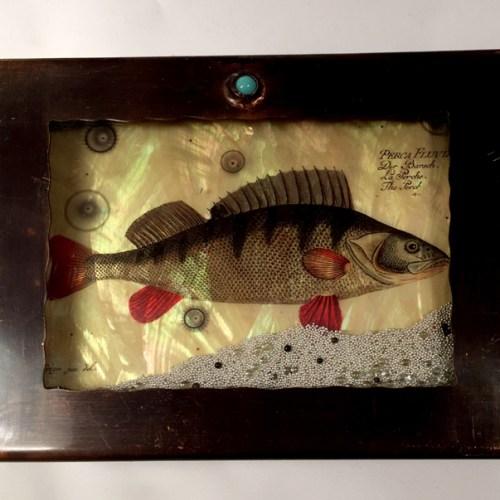 Fish Box