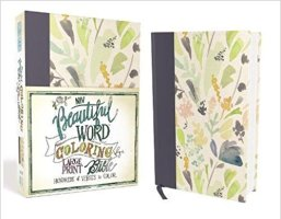 NIV Coloring Bible