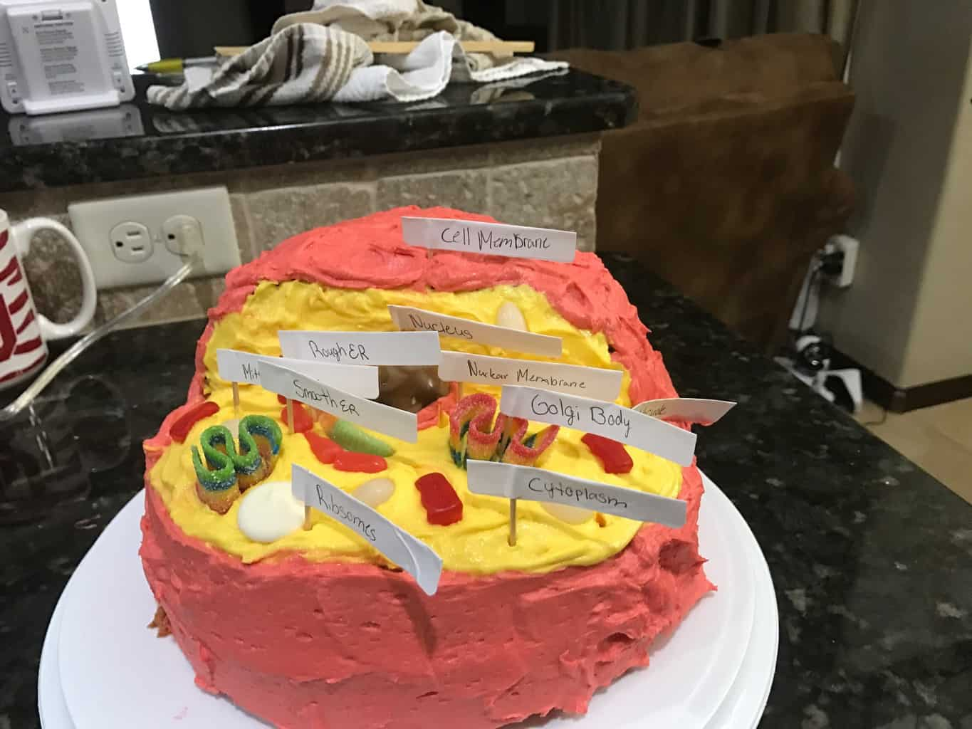 Edible Animal Cell Cake