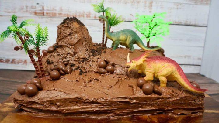 Chocolate Dinosaur Cake Grace Like Rain Blog