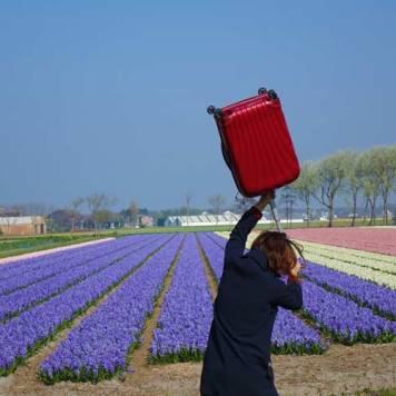Samsonite The Serious Traveller Suitcase Gracie Opulanza (7)
