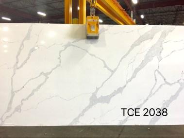 TCE2038
