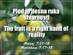 Matej 7;17,18