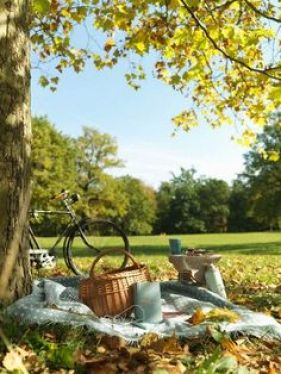 чудесен пикник сред природата идеи за летен уикенд