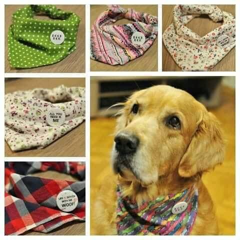 кучешки работи и подаръци