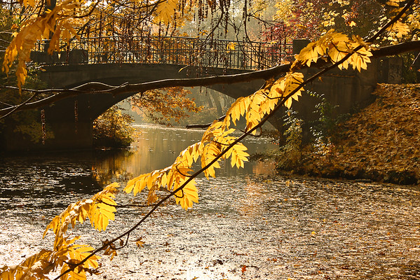 Autumn colors draped around a bridge in a park.