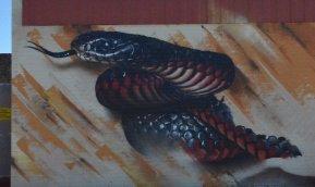 Sirum. Photo © Benalla street art wall to wall