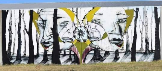 Ears. Photo © Benalla street art wall to wall