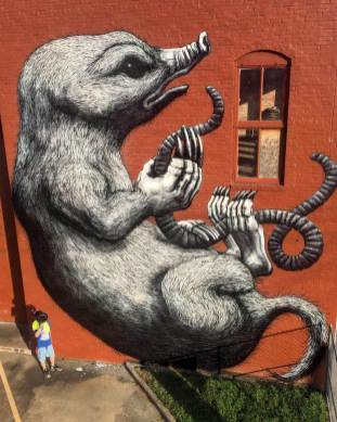roa-fort-smith-