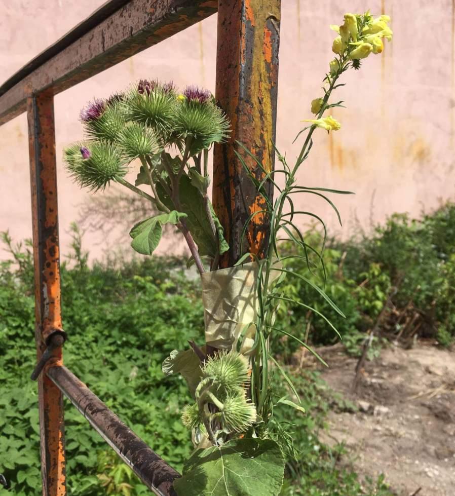 Pastel, Kiev, Ukraine