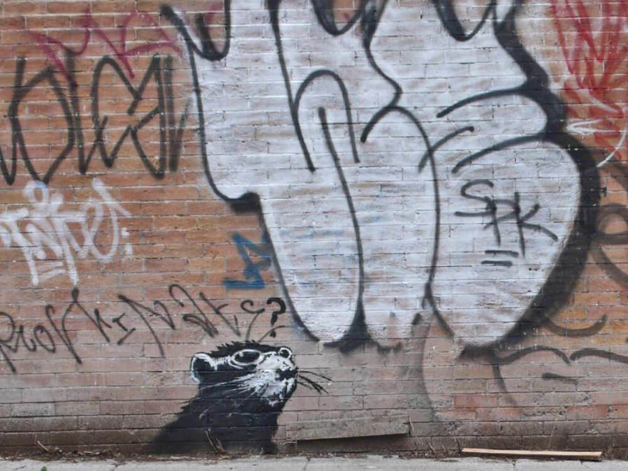 Banksy Rat, Photo © Banksy