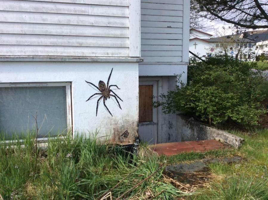 JPS- Spider Street Art. Photo Credit JPS