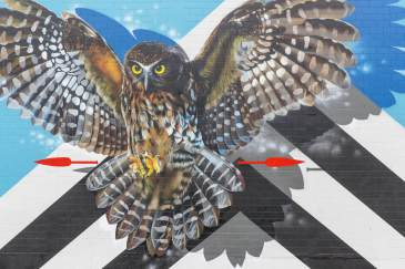 Charles Janine Williams, Paradox Tauranga Street art Festival 2017. Photo credit Luke Shirlaw