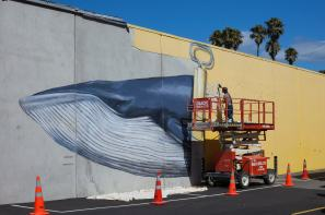 Seth, Seawalls: Artists for Oceans, Napier, NZ. Photo Credit Vinny Cornelli