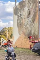 Wall to Wall Street Art festival, Benalla, Australia 2017. Photo credit Nicole Reed.