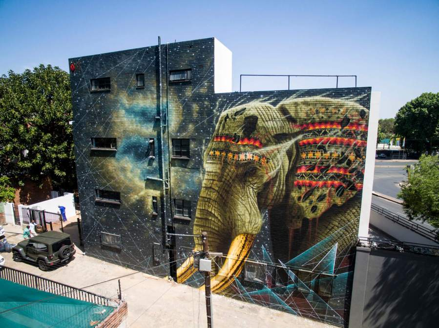 Sonny, Jelani the Elephant, Johannesburg . Photo Credit Sonny