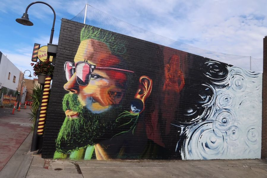 ZEDR, The Big Picture Fest, Street Art Festival, Frankston, Victoria, Melbourne. Photo Credit @vanstheomega