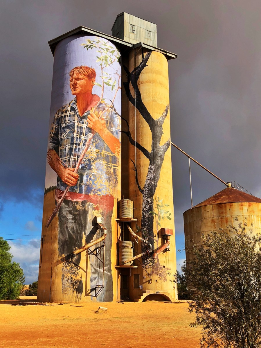 Fintan Magee - The (Wimmera-Mallee ) Silo Art Trail - Patchewollock. Photo Credit Annette Green