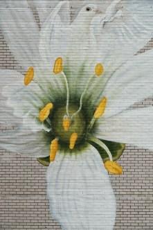 Jorge-gerarda-Manhattan-New-York-City-ILO100-Art-Walk-street-art-for-mankind-pc-just-a-spectator-5