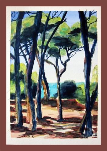 Postkarte Pinienwald