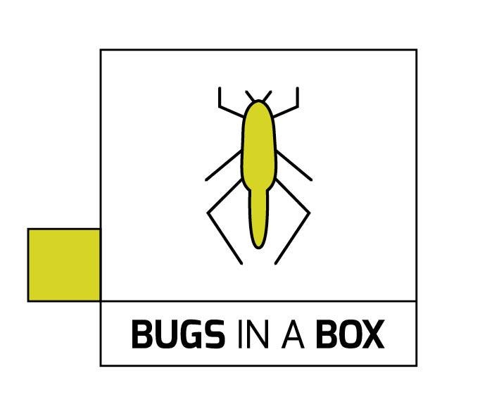 Logo Bugs in a Box