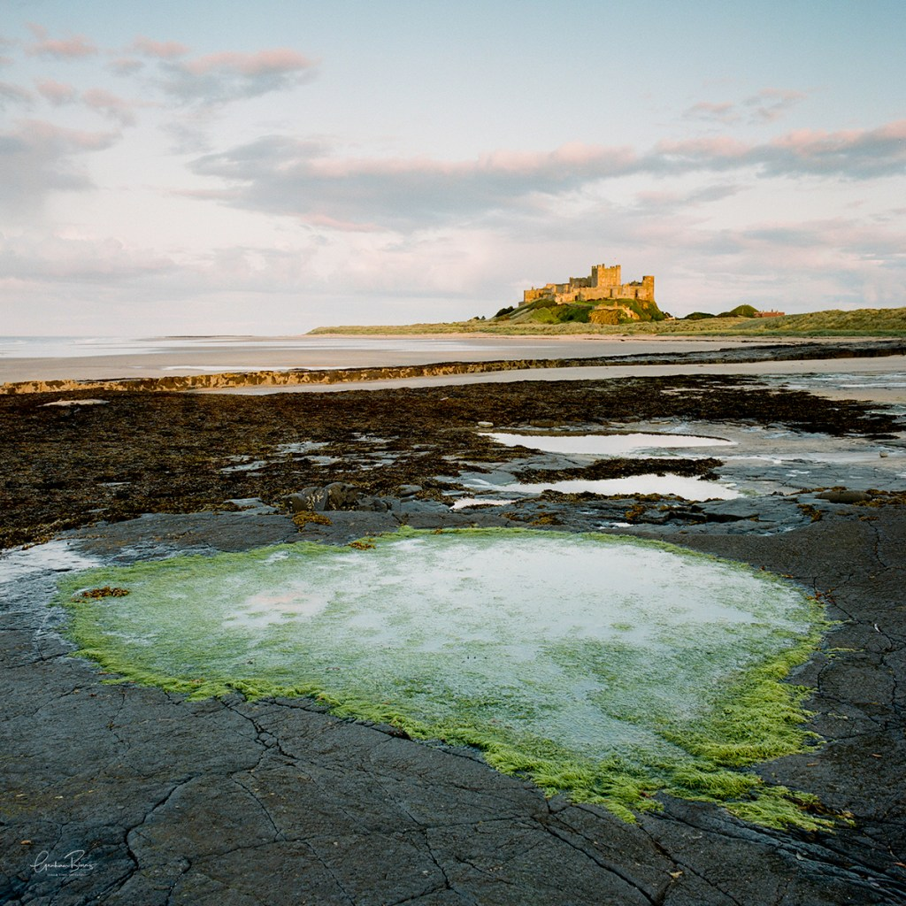 Bamburgh Castle Heart Rock Pool Print