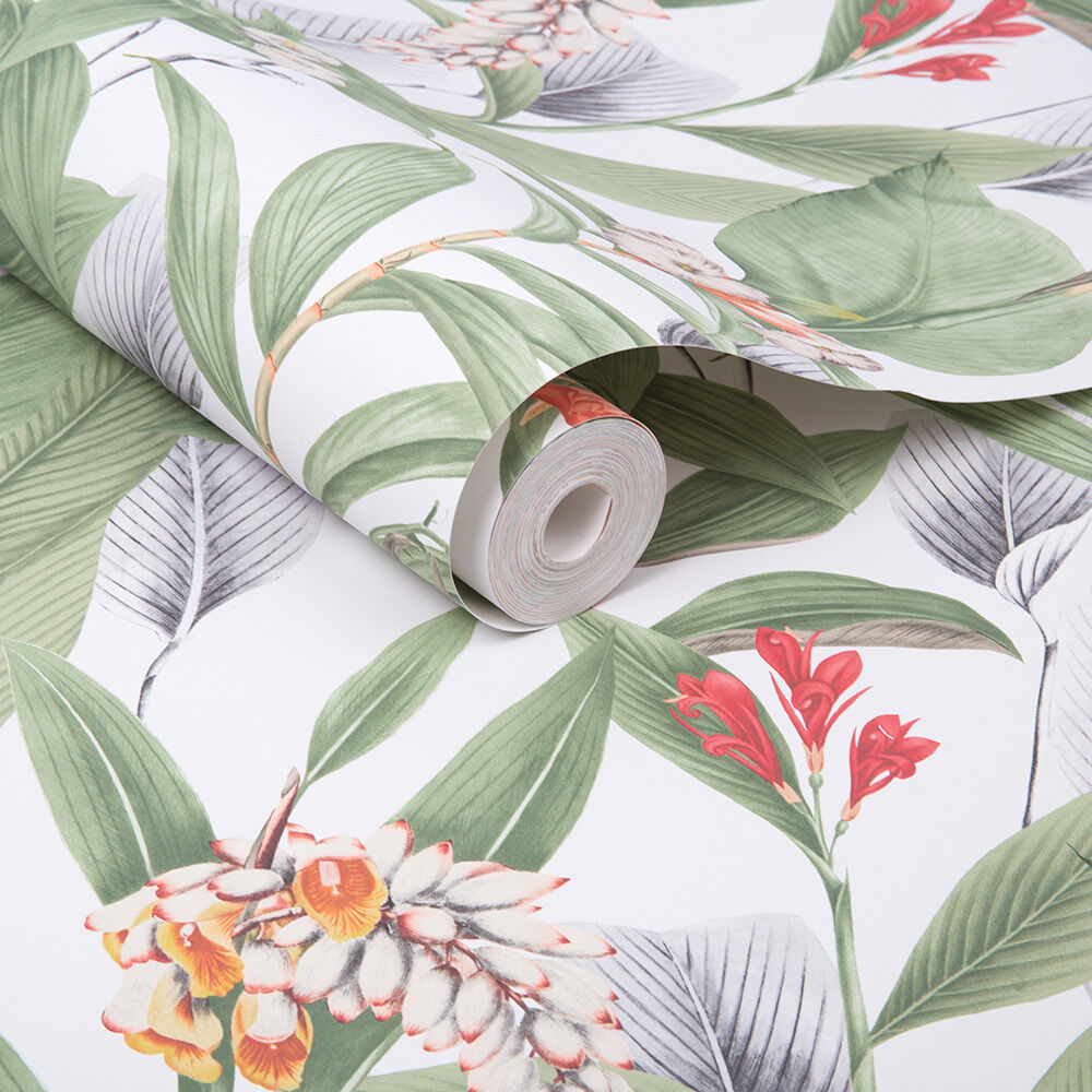 Botanical Powder Wallpaper Grahambrownuk