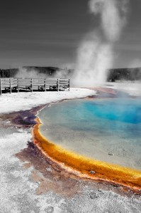 Yellowstone in Selective Color