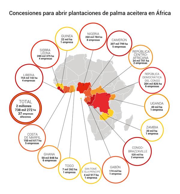 Comunidades africanas luchan contra el acaparamiento de tierras para el cultivo de palma aceitera