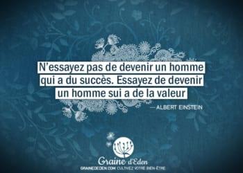 N'essayez pas de devenir un homme qui a du succès. Essayez de devenir un homme qui a de la valeur.