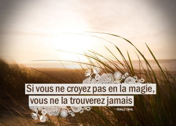 Si vous ne croyez pas en la magie, vous ne la trouverez jamais - Roald Dahl - Graine d'Eden citations