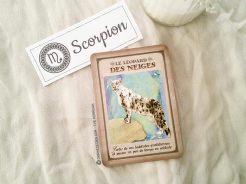 Tarot divinatoire oracle divinatoire- horoscope 2016 pour tous les signes astrologiques. Animal Totem, tarot de Marseille et Rider-Waite, l'horoscope 2016 - Graine d'Eden