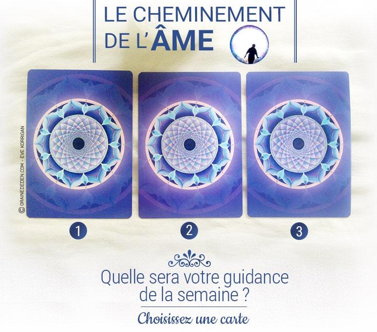 4 au 10 juillet - Votre guidance de la semaine avec les cartes Oracle Le Cheminement de l'âme de James Van Praagh - Graine d'Eden Tarots et Oracles divinatoires