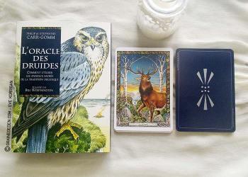 Oracle des Druides