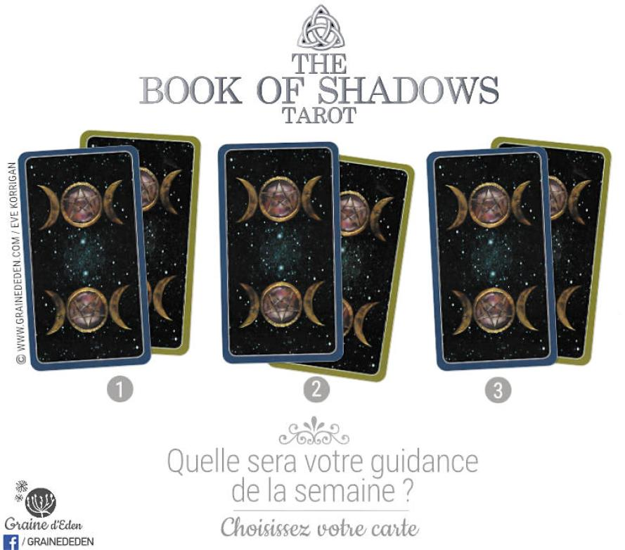 29 janvier au 4 février 2018 - Votre guidance de la semaine avec The Book of Shadows Le Livre des Ombres de Barbara Moore So Above As Below