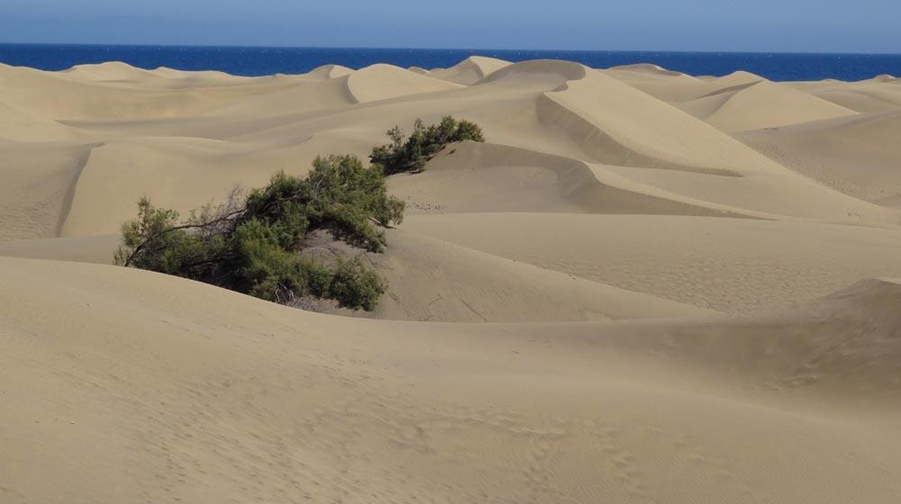 Gran Canaria Dunes Maspalomas