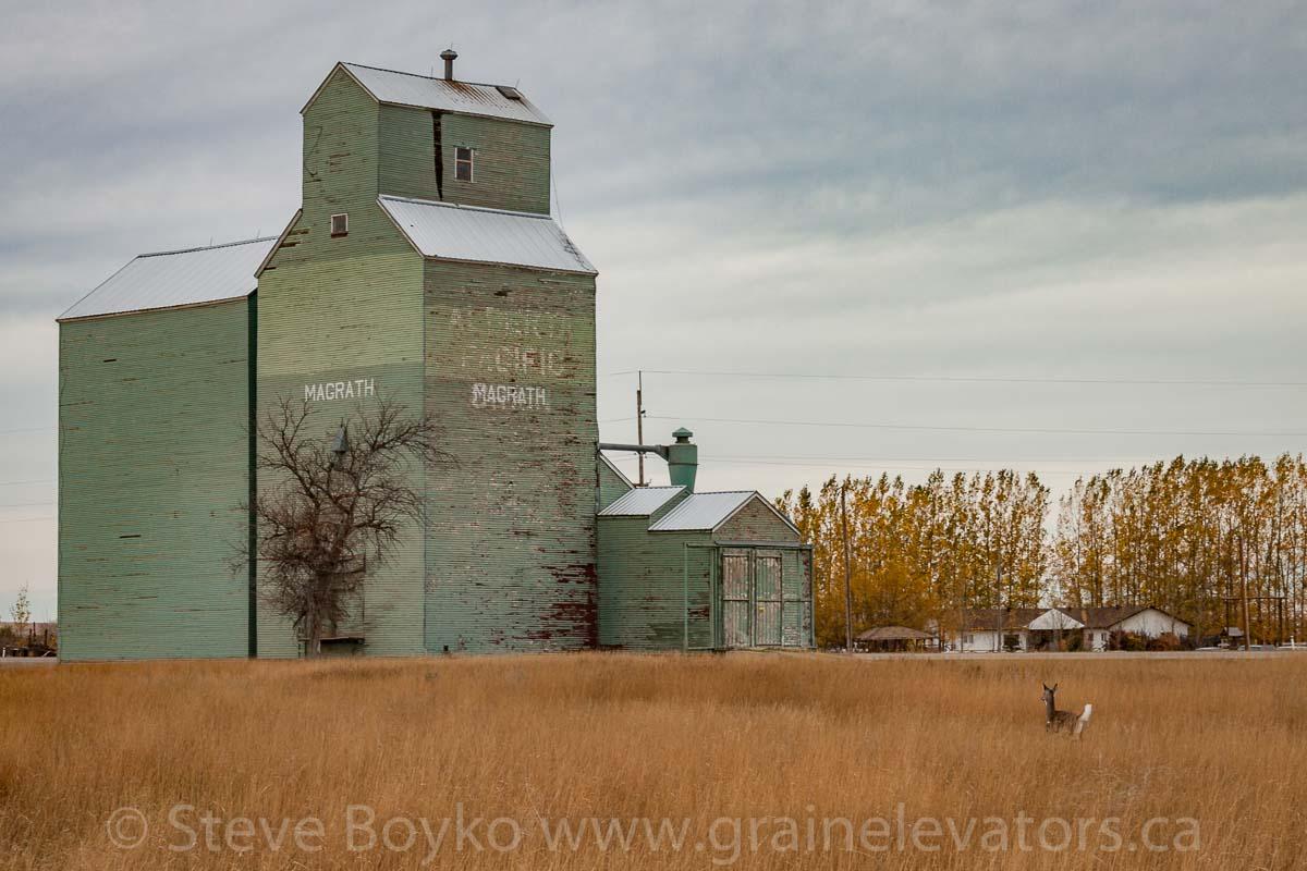 Magrath Grain Elevators Of Canada