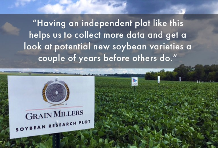 Non-GMO Food-Grade Soybean Research Plot Open to Growers, Breeders, and Customers